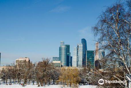 Park Novodevichi Prudy