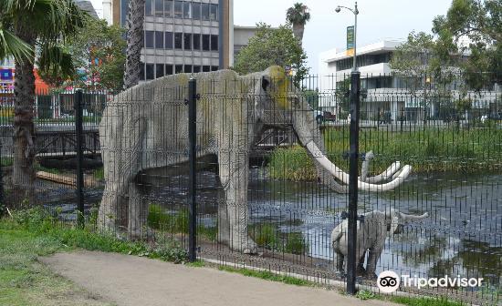 Park La Brea4