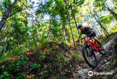 Tropic Rides Mountain Bike Shuttles and Tours