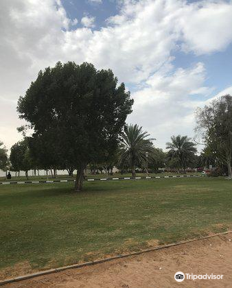 Sharjah National Park4