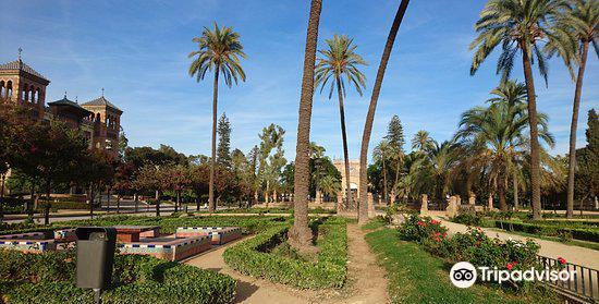 Plaza del Triunfo3