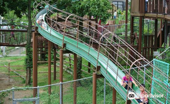 Omoriyama Zoo3