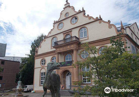 Naturkundemuseum im Ottoneum Kassel1