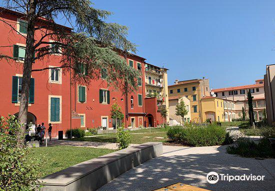 Biblioteca Universitaria di Pisa1