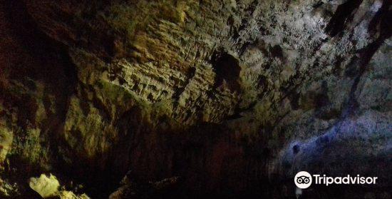 The Bat Cave2
