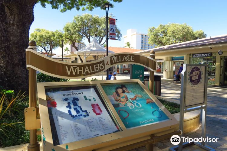 Whalers Village Museum