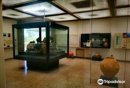 Parco Archeologico e Museo di Sibari