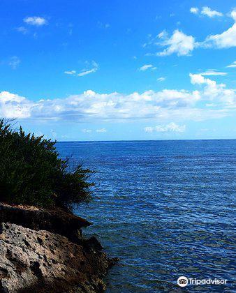 Playa Manglillo1