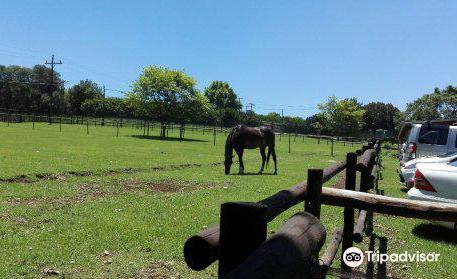 Winsome View Animal Farm & Bistro