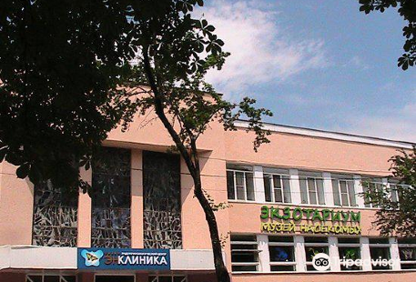 Stavropol Regional Theater of Musical Comedy