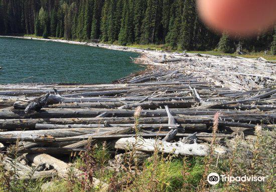 Duffey Lake Provincial Park3