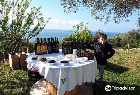 Buzuku Montenegro Olive Oil