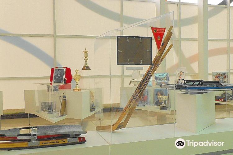 Museum of Sochi Sport Honour4