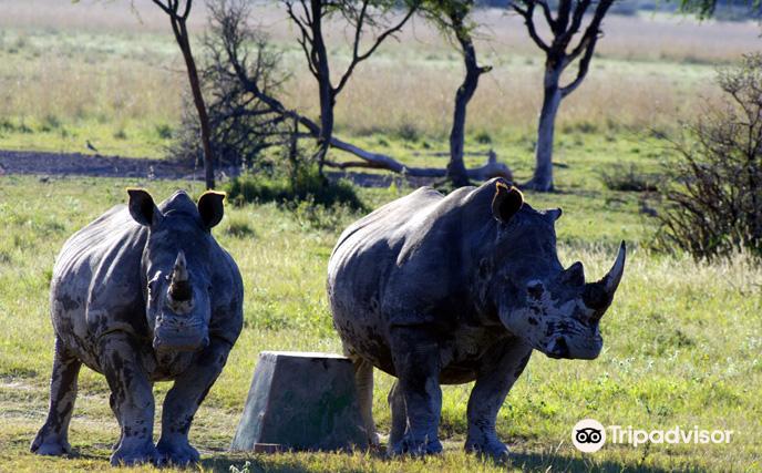 Khama Rhino Sanctuary2