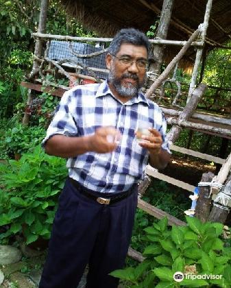 Herbwalk in Langkawi3