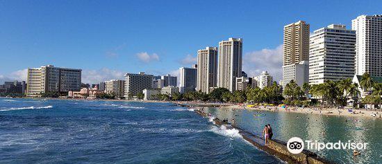 The Kapahulu Groin (Waikiki Wall)2