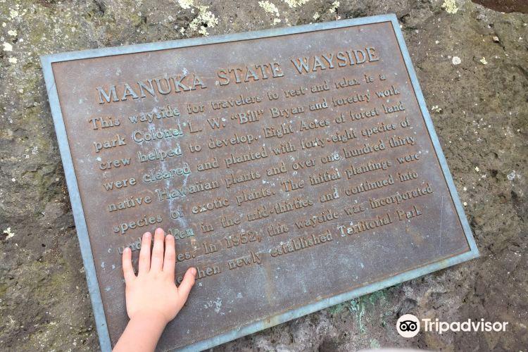 Manuka State Wayside Park1