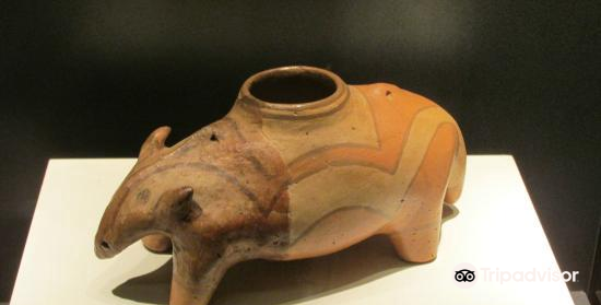Cucuteni Neolithic Art Museum4