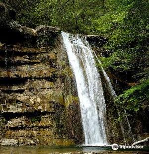 Parco Nazionale delle Foreste Casentinesi, Monte Falterona e Campigna