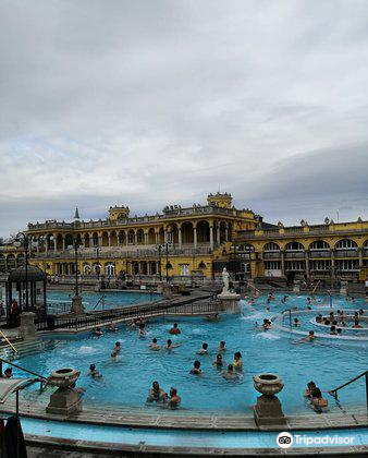 Szechenyi Baths and Pool3