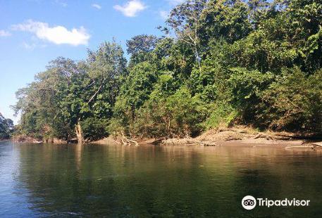 Sarapiqui River