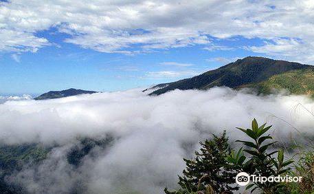 El Silencio de Los Angeles Cloud Forest Reserve