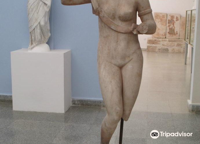 Paphos District Museum1