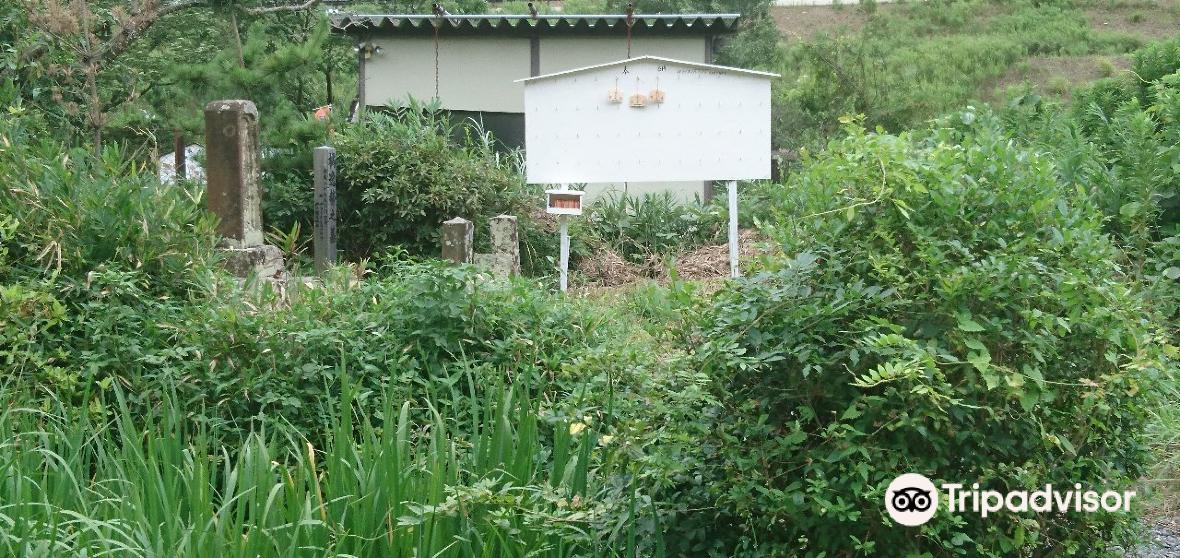 Sennan District