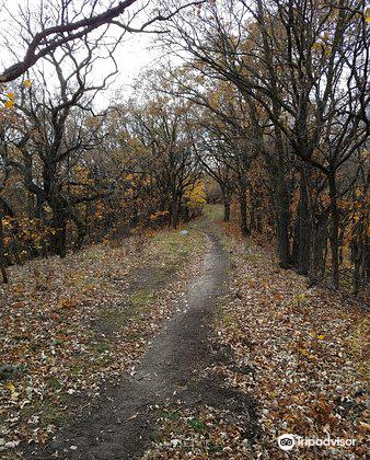 Sica Hollow State Park