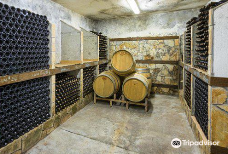 Sintica Winery