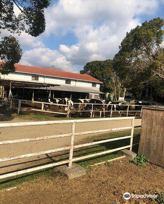Awajishima Farm