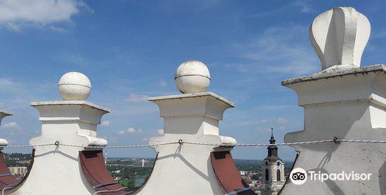 Kazimierzowski Castle1