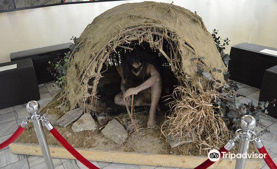 Muzeum Filumenistyczne2