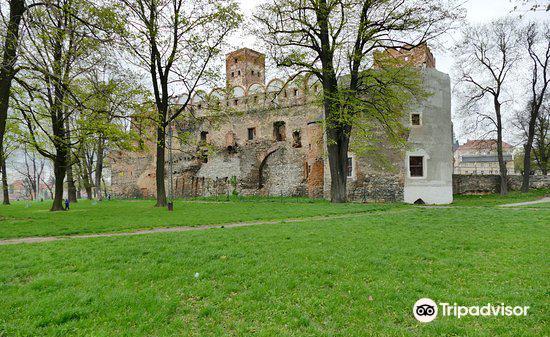 Ruins of Ducal Castle in Zabkowice Slaskie1