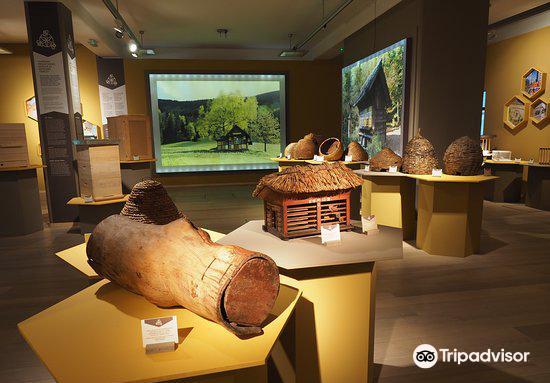 Slovenski Etnografski Muzej1