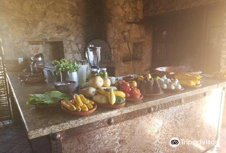 Organic Farm Tour at Huerta Los Tamarindos
