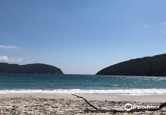 Fortescue Bay4