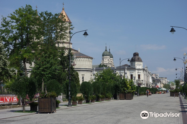 Iasi Historical Town3