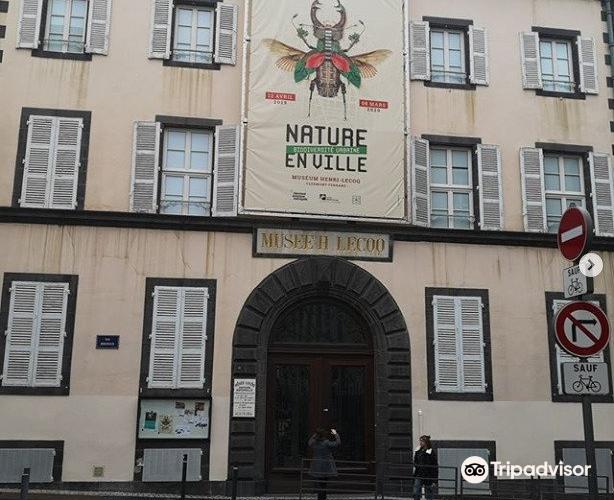 Musee Lecoq Natural History Museum3