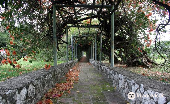Hope Botanical Garden and Zoo3