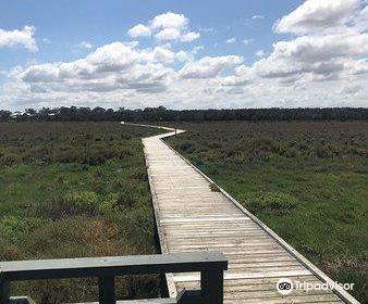 Creery Wetlands Nature Reserve