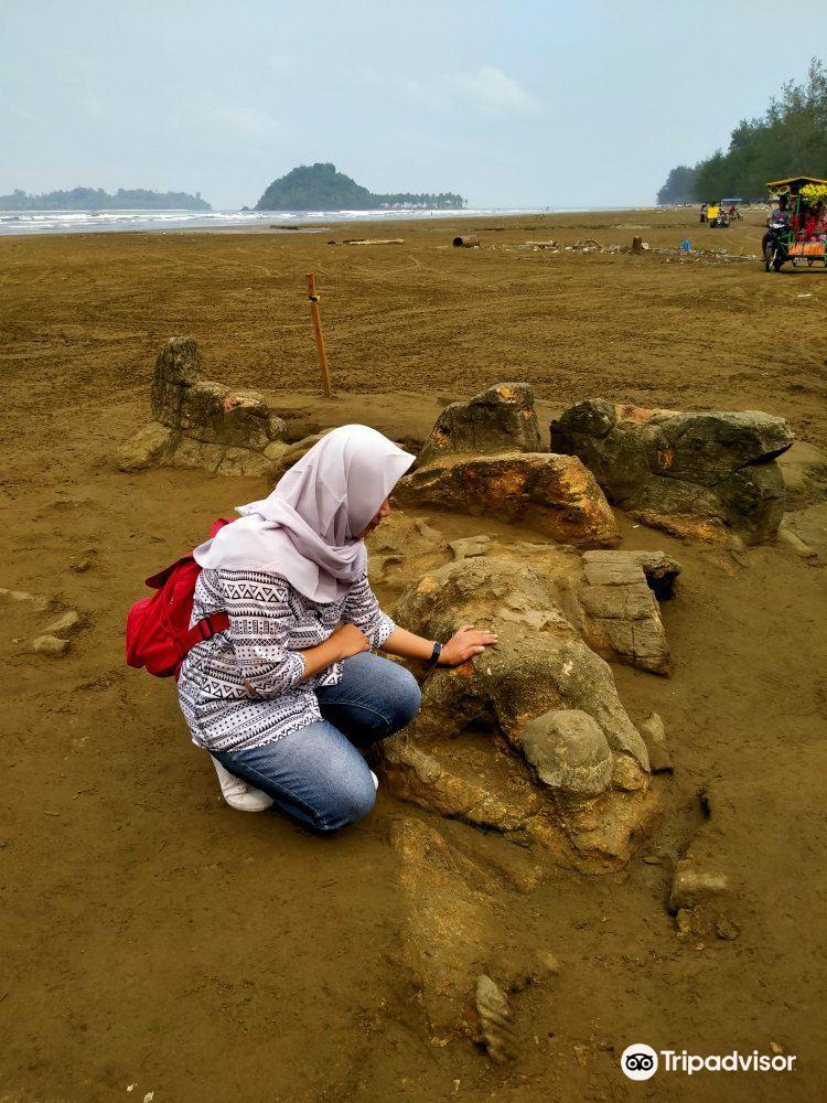 Manis Beach