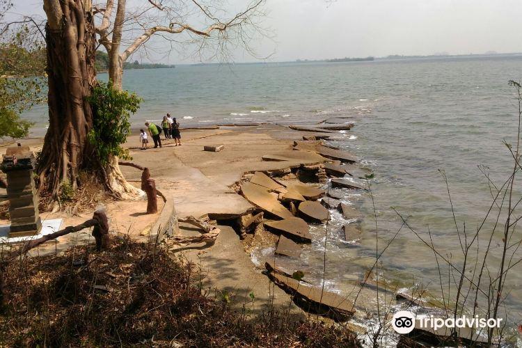 化石貝殼海灘1