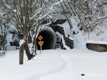 Old Hakodate Line Kamui Kotan Tunnels4