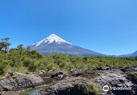 県 オソルノ 富士山のような山、オソルノ山とバラの街 チリ・プエルトバラス3