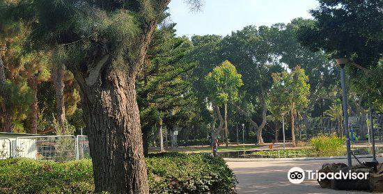 Gan Meir Park4