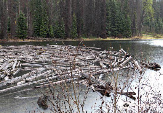 Duffey Lake Provincial Park4