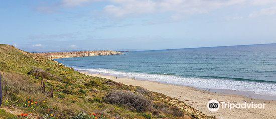 Maslin Beach4