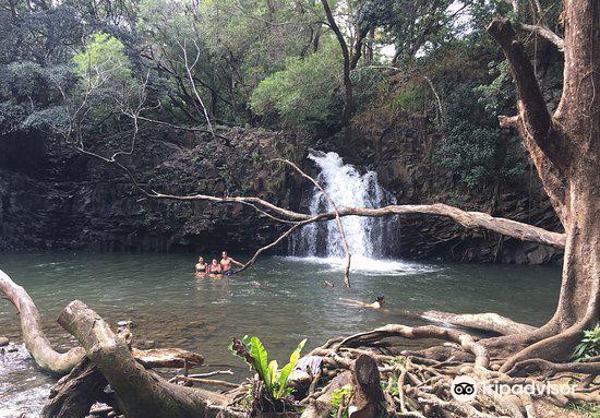Twin Falls3