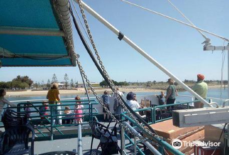 Dolphin Explorer Cruises
